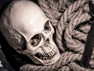 Тайна пиратского корабля